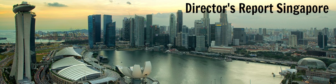 We offer Director's Report preparation service and audited financial statements service. Call +65 92273989 to outsource Director's Report.